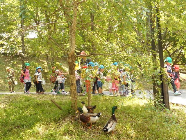 皆が幸せに暮らせる制度が整っており、子どももノビノビと育てることができます。